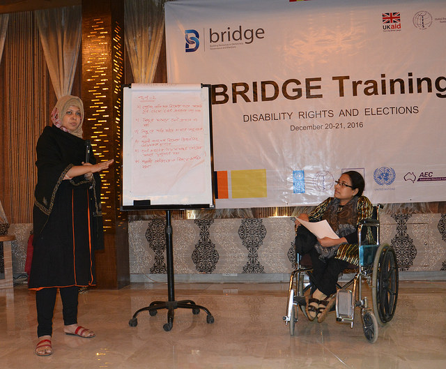 IFES Launches New Training Module on Disability Rights and Elections