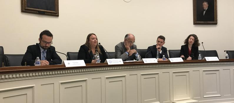 Europe and Eurasia Director Participates in Hill Briefing on Turkey Feature Image